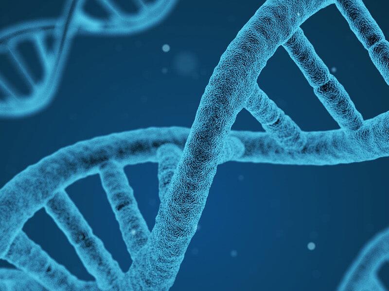 Prestar servicio extraccion ADN